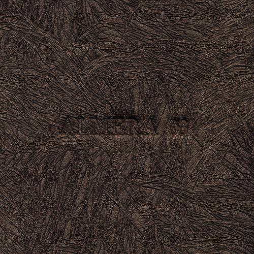 Almera 03