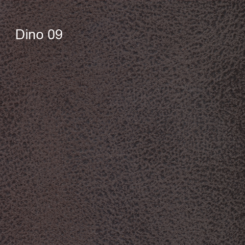 Dino 09